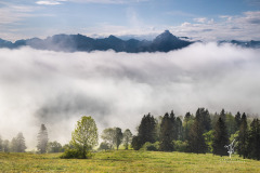 Valley-of-Fog