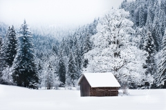 Tal-des-Schnees