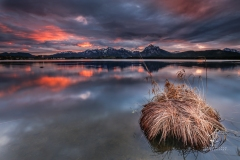 Lake-Island