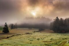 Sunken-in-Fog