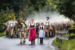 Viehscheid-I