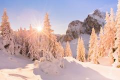 Winter-Paradise
