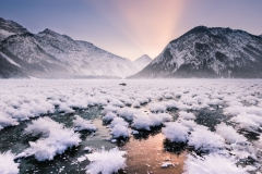 Garten der Eisblumen