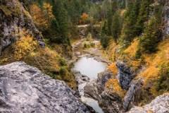 Herbstliche-Wildnis