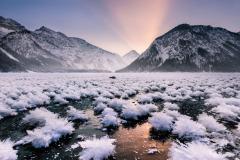 Garden-of-Ice-Flowers