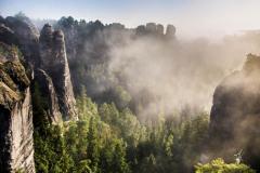 Land-of-Fog