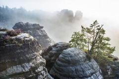 Sandstone-Rocks