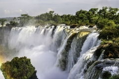 Paradise-Falls