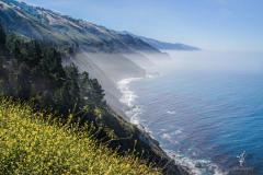 Californian-Coast