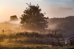 Baltic-Sea-Fog