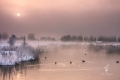 Silence-in-Winter