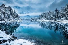 Winter-Hamony